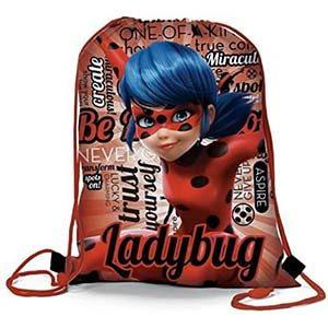 Zaini Ladybug